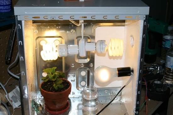 Building Of An Indoor Computerized Grow Box