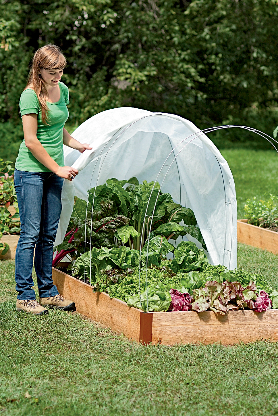 How to start a winter vegetable garden