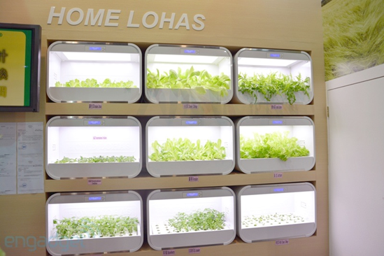 Hydroponic Gardening Kits In Your Living Room Via Home Lohas