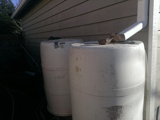 hook up rain barrel